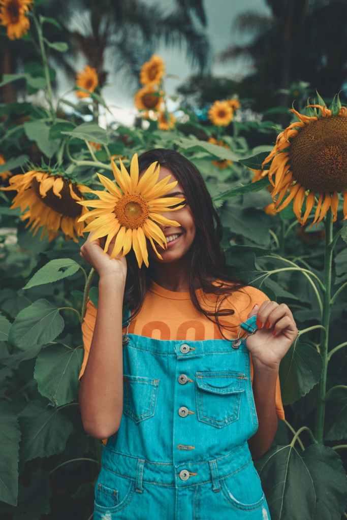 Sunflowerpexels-photo-2901913